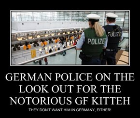GERMAN POLICE ON THE LOOK OUT FOR THE NOTORIOUS GF KITTEH