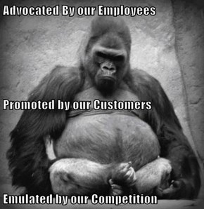 Advocated By our Employees Promoted by our Customers  Emulated by our Competition