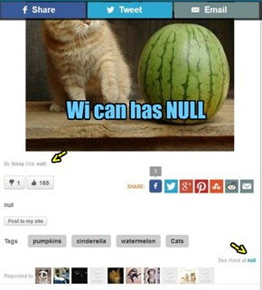Wi can has NULL