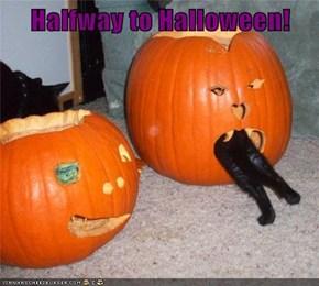Halfway to Halloween!