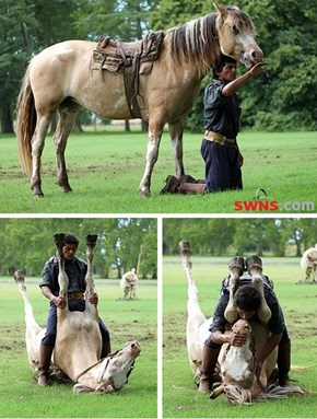 An Expert Horse Whisperer Lulls a Mare into Positions Nobody Else Would Dare
