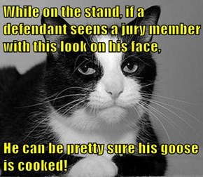 While on the stand, if a defendant seens a jury member with this look on his face,  He can be pretty sure his goose is cooked!