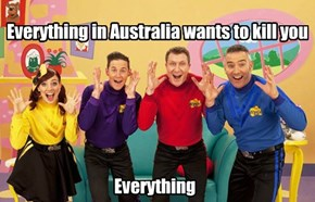 Everything in Australia wants to kill you