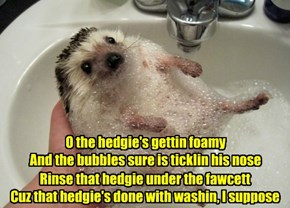 Silly hedgie bathtime song