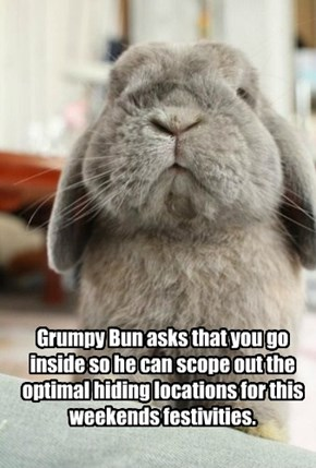 Grumpy Bun asks that you go inside so he can scope out the optimal hiding locations for this weekends festivities.