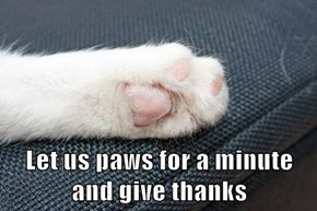 Let us paws for a minute                  and give thanks