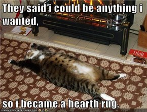 They said i could be anything i wanted,  so i became a hearth rug.