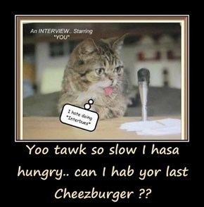Yoo tawk so slow I hasa hungry.. can I hab yor last Cheezburger ??