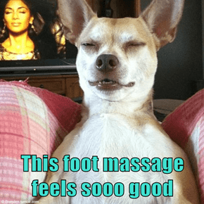 This foot massage feels sooo good
