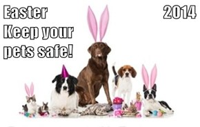 Easter                                    2014 Keep your                                                 pets safe!
