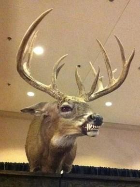 The Nightmare Deer