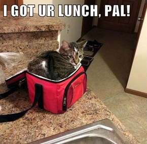 I GOT UR LUNCH, PAL!