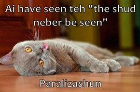 "Ai have seen teh ""the shud neber be seen""  Paralizashun"