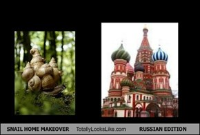 SNAIL HOME MAKEOVER Totally Looks Like RUSSIAN EDITION