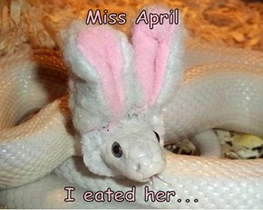 Miss April  I eated her...
