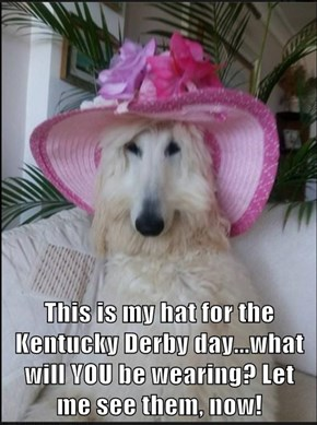 This is my hat for the Kentucky Derby day...what will YOU be wearing? Let me see them, now!