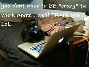 yoo dont have to BE *crazy* ta wurk heerz... we'll TRAIN yoo !!  LoL