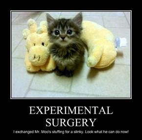 EXPERIMENTAL SURGERY