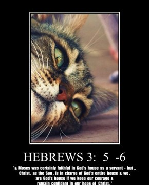 HEBREWS 3:  5  -6