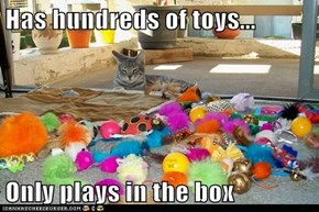 Has hundreds of toys...  Only plays in the box