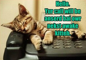 Hello. Yur call will be anserd bai owr nekst awake kitteh.
