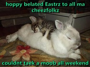 hoppy belated Eastrz to all ma cheezfolkz  couldnt taek a moob all weekend