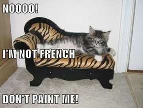 NOOOO! I'M NOT FRENCH DON'T PAINT ME!