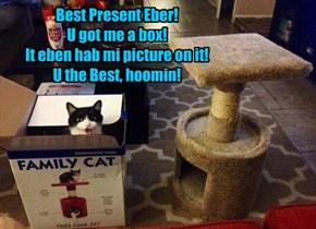 Best Present Eber! U got me a box! It eben hab mi picture on it! U the Best, hoomin!