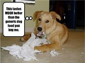 I wonder why mydog keeps chewing up my toilet paper. If only I could read his mind, maybe I could find out.