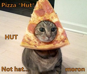 Pizza *Hut*   HUT Not hat...                     moron