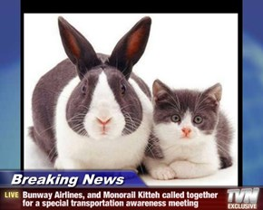 Breaking News - Bunway Airlines, and Monorail Kitteh called together for a special transportation awareness meeting