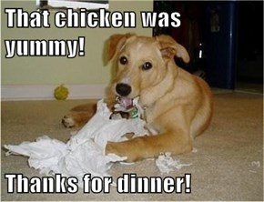 That chicken was yummy!  Thanks for dinner!