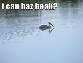 i can haz beak?