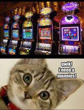 Catsino!