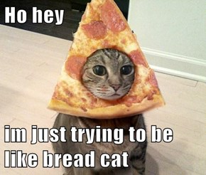 Ho hey  im just trying to be like bread cat