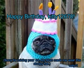 Happy Birthday, kitty12678!