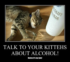 TALK TO YOUR KITTEHS ABOUT ALCOHOL!