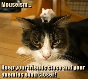 Mouseism...  Keep your friends close and your enemies even closer!