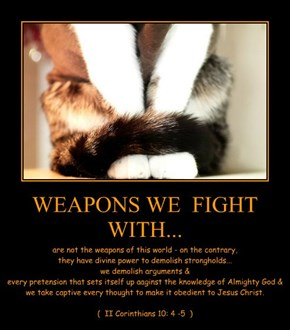WEAPONS WE  FIGHT WITH...