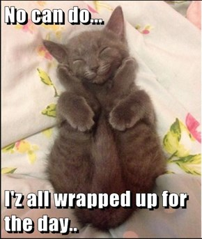No can do...  I'z all wrapped up for the day..