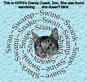 This is KKPS's Drama Coach, Doc. She was found wandering . . . she doesn't blink.