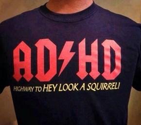 AC / HD Highway to HEY Look a Squrrel