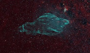 The Manatee Nebula