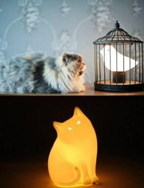 Cat Eats Bird