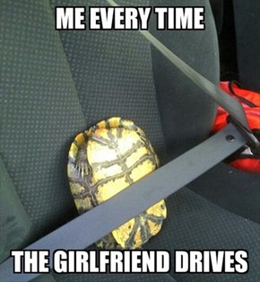 Some Drivers Make You Wish You Had a Shell
