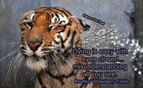 Living is easy with                          eyes closed...                      misunderstanding                       all you see.