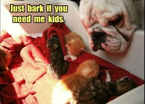 Just  bark  if  you need  me  kids.