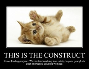 THIS IS THE CONSTRUCT