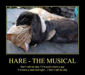 HARE - THE MUSICAL