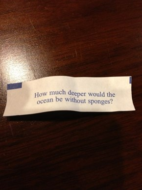 Fortune Cookies Are Interested in Oceanography